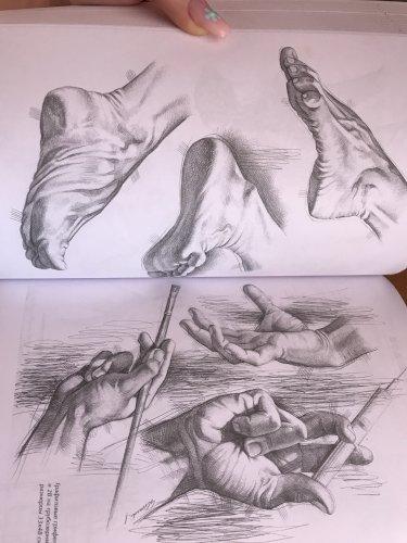 рисование полное руководство Джованни Чиварди