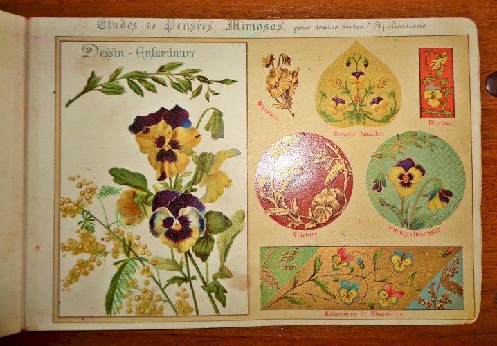 Живые и декоративные цветы Fleurs dapres Nature et fleurs Ornementales. Etudes de Fleurs et Feuillages.