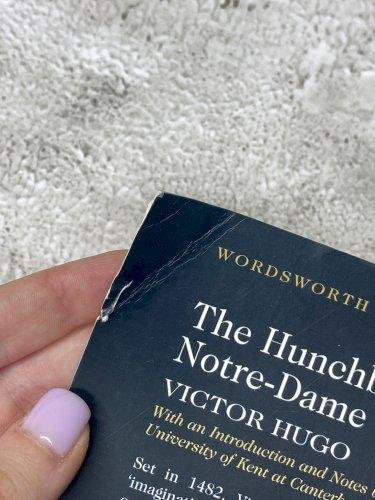 The Hunchback of Notre-Dame / Собор Парижской Богоматери / Собор Паризької Богоматері