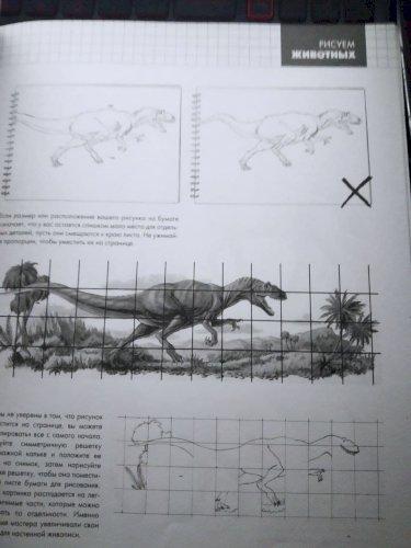 Рисуем животных, Рисуем портреты